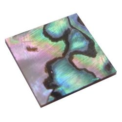 Carré Abalone 20x20x1mm