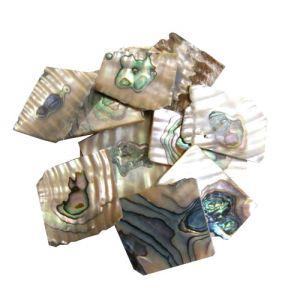 Nacre verte abalone en 3 mm au poids plaques standard, 50 gr (~50 cm2)