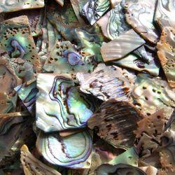 Chutes en nacre bleue (Paua), 0,8 à 2mm d'épais, 100g