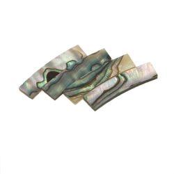 Rosace abalone standard véritable,diam 120 mm larg 5 mm, ép 1,5 mm