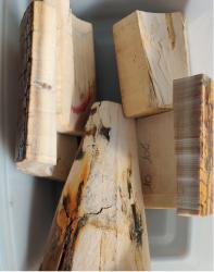 Blocs ivoire de mammouth blanc pour 10/15 plaques de tête, 500 g