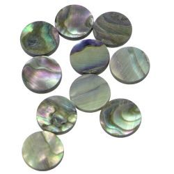 Pastille(s) abalone diamètre 9,5 les 10 pièces