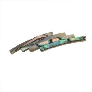 Rosace abalone standard véritable,diam 120 mm larg 1,8 mm, ép 1,5 mm