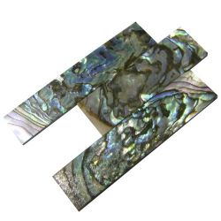 heart abalone slides