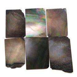 plaques de nacre noire